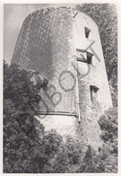 Opdorp MOLEN / MOULIN -Originele Foto Jaren '70 ( A.Carre) 75 - Buggenhout