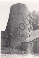 Buggenhout MOLEN / MOULIN -Originele Foto Jaren '70 ( A.Carre) 76 - Buggenhout