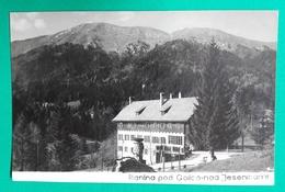 Planina Pod Golico Nad Jesenicami 1961 Used  Postcard Slovenia - Slovenia