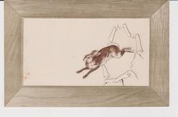 LIEVRE . GAUFREE . MARY MILL . CARTE ANCIENNE - Animals