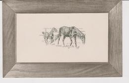 JUMENT ET SON POULAIN . GAUFREE . MARY MILL . CARTE ANCIENNE . 2 - Animali