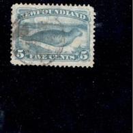NEWFOUNDLAND1894:Michel 34 Used - Newfoundland
