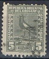 1923 - URUGUAY - PAVONCELLA DEL SUD / SOUTHERN LAPWING. USATO / USED - Uruguay