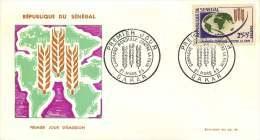 SENEGAL  1963  Campagne Mondiale Contre La Faim   FDC Non Adressé - Senegal (1960-...)