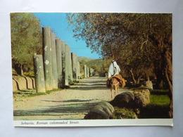 SEBASTIA - Roman Colonnaded Street - Palestine
