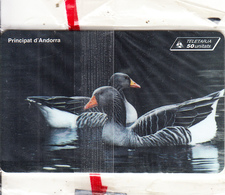 ANDORRA(chip) - Wild Ducks, Tirage 10000, 11/96, Mint - Andorra