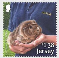 Jersey 2018 Hamster MNH 1V - Jersey