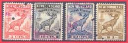 Canada Newfoundland # NFR 36, 37, 39, 40 O VF  - Inland Revenue - Newfoundland