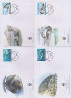 World Wide Fund For Nature 2001 Australian Antarctic Territory  Seals ,Set 4 Official First Day Covers - FDC