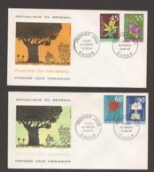 1966- Fleurs Du Sénégal: Argémone, Mimosa, Boule De Feu, Baobab - 2 FDC - Senegal (1960-...)