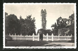 CPA Mauritius, Entrance To Pamplemousses Gardens - Maurice