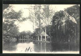 CPA Mauritius, Pamplemousses, Le Kiosque Des Gouramis, Jardin Botanique - Maurice