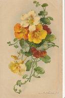 Illustrateur - Catharina KLEIN - Fleurs - Klein, Catharina
