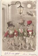Thème Chat, Chats. Chats Humanisés (A5p83) - Cats