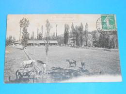 31 ) Ganties-les-bains - N° 853 - Les Paddocks Et Un Coin Du Parc -  Année 1911  -  EDIT - Labouche - France