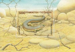 1995 Tajikistan Lizards Souvenir Sheet MNH - Tadjikistan