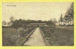 * Onze Lieve Vrouw Waver (Antwerpen - Anvers) * (E. & B.) Institut Des Ursulines, Vers Le Halle, Jardin, Tuin Rare - Sint-Katelijne-Waver
