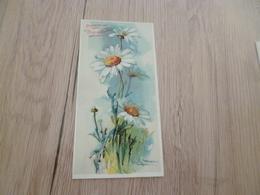 Chromo Chocolat Aiguebelle Klein  Flowers Fleurs - Aiguebelle