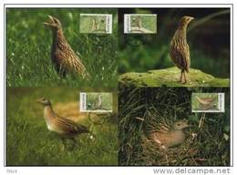 Moldova Moldavia 2001 WWF W.W.F. Set X4 Corncrake Bird Birds Fauna Maximum Cards MC - Maximum Cards