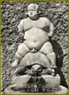 CP Italie,-vera Fotografia,432 Innocenti-FIRENZE -Giardino Di Boboli-Il Bacchino-Boboli Garden The Little Bacchus - Monuments