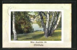 AK Moll, Mes Amities De Moll - Belgium