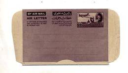 Aerogramme 25 Avion Sur Ruine - Poste Aérienne