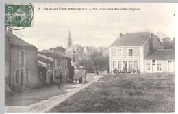 Nogent En Bassigny - Un Coin Des Hautes Vignes - Nogent-en-Bassigny