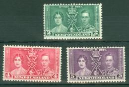 Newfoundland: 1937   Coronation     MH - 1908-1947