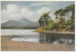 Postcard - Derwentwater, Friars Crag - Card No.c30 - Unused Very Good - Unclassified