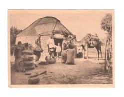 04859 Askhabad Harvesting - Turkménistan