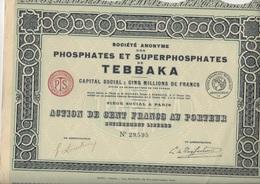 LOT DE 3 ACTIONS  DE 100 FRS - SOCIETE DES PHOSPHATES ET  SUPERPHOSPHATES DE TEBBAKA -ALGERIE -1925 - Mines