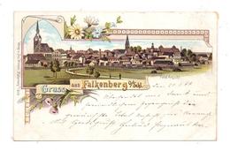 OBERSCHLESIEN - FALKENBERG / NIEMODLIN, Lithographie 1899, Gesamtansicht - Schlesien