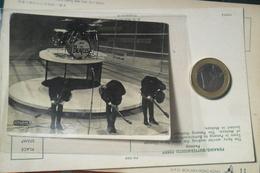 The Beatles Vintage - Photographs