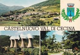 CASTELNUOVO VAL DI CECINA VEDUTE VIAGGIATA - Pisa