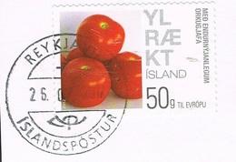 2012 - ISLANDA / ICELAND - ENERGIA VERDE / GREEN ENERGY. USATO - 1944-... Repubblica