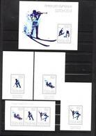 Togo, 2014, Olympic Sochi, Sheetlet +4 S/s Blocks - Winter 2014: Sochi