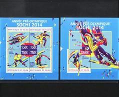 Niger, Winter Olympic Sochi 2014, Sheetlet + Block - Winter 2014: Sochi