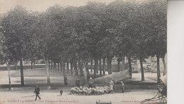 NOGENT SUR SEINE   PLACE D ARMES ET MARCHE AUX PORCS - Nogent-sur-Seine