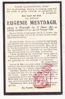 DP Eugenie Mestdagh ° Westkapelle Knokke-Heist 1861 † Gent 1929 - Images Religieuses