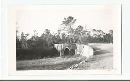 """Photo  VAR   CANNET Des MAURES  Plaine Des Maures  Pont """"romain"""" Sur L'Aille   1957 - France"""