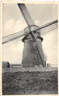 D.18-3064 : DOEL AAN SCHELDE. MOLEN. - Windmills