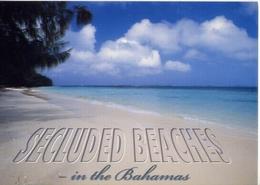 The Bahamas - Secluded Beaches - Formato Grande Non Viaggiata – E 7 - Cartoline