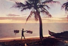 L'afrique En Couleurs Coucher De Soleil - Formato Grande Viaggiata – E 7 - Cartoline