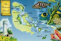 The Bahamas - Islands - Formato Grande Non Viaggiata – E 7 - Cartoline