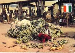 ** Lot De 5 Cartes ** AFRIQUE NOIRE ( Scènes De Vie ) SENEGAL - CPSM CPM GF - Black Africa - Côte-d'Ivoire