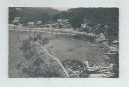 La Seyne-sur-Mer (83) :La Plage De Pategas En 1950 PF. - La Seyne-sur-Mer