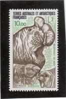 V2 - TAAF - PA 55 ** MNH De 1978 - Faune - Eléphant De Mer - ( Sous La Faciale ) - Neufs