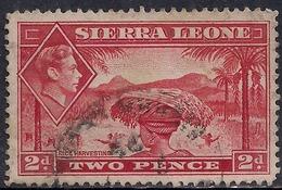Sierra Leone 1938 - 44 KGV1 2d Scarlet SG 191a ( G1472 ) - Sierra Leone (...-1960)