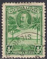 Sierra Leone 1932 KGV 1/2d Green Rice Field SG 155 ( G1475 ) - Sierra Leone (...-1960)