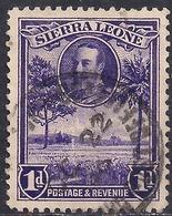 Sierra Leone 1932 KGV 1d Violet Rice Field SG 156 ( G1474 ) - Sierra Leone (...-1960)